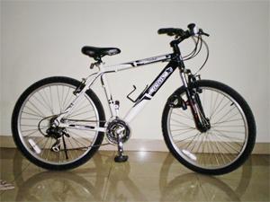 NEXT Cyclone Bike