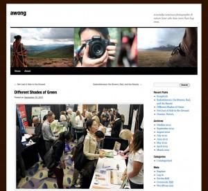 Anice Wong blog